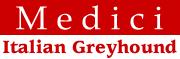 イタリアングレーハウンドのブリーダー(IG犬舎)Medici メディチ|内田有紀|ItalianGreyhound